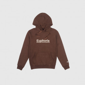 Толстовка с капюшоном Champion Hooded  Sweatshirt 211878 Chocolate