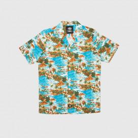 Рубашка Dickies Blosslave Blue