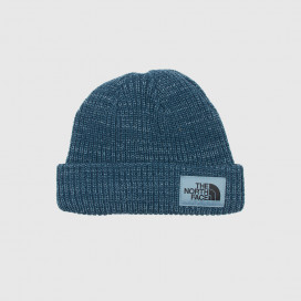 Шапка The North Face Salty Dog Beanie BLUWNGTL/BLUSTN